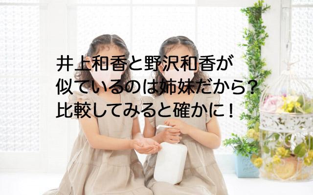 井上和香と野沢和香が似ているのは姉妹だから?比較してみると確かに!